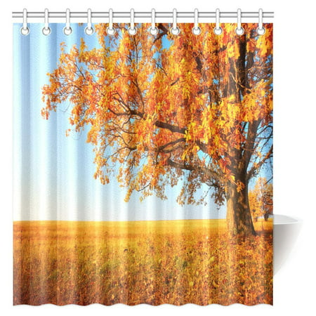 MYPOP Nature Landscape Shower Curtain Autumn Tree With Yellow Leaves And Meadow Over Blue