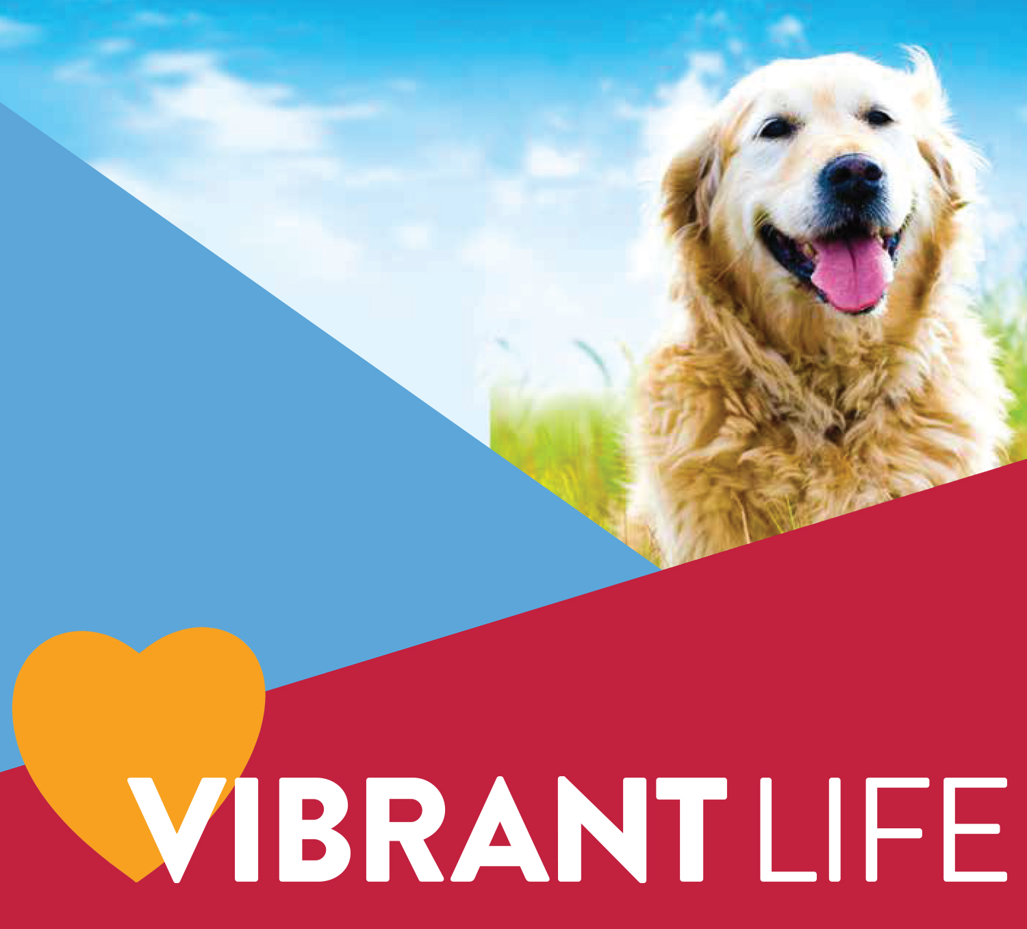 Shop Vibrant Life Pet Supplies!