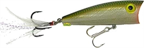 "Click here to buy P65 Rebel 3"" Magnum Pop-R 1 2 oz Tennessee Shad Fishing Lure by Rebel."