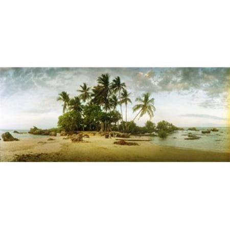 Palm trees on the beach in Morro De Sao Paulo  Tinhare  Cairu  Bahia  Brazil Poster Print by  - 36 x 12 - image 1 of 1