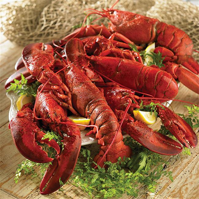 Lobster Gram JTL2C JUST THE LOBSTERS WITH 1 LB LOBSTERS