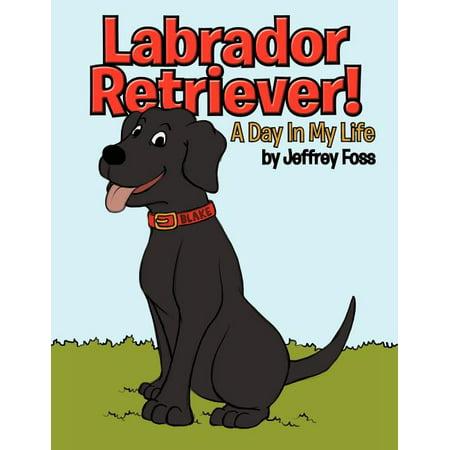 Labrador Retriever! : A Day in My Life Life Labrador Retriever