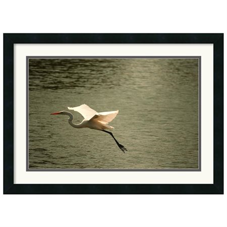 Amanti Art 'Crane' by Andy Magee Framed Photographic Print