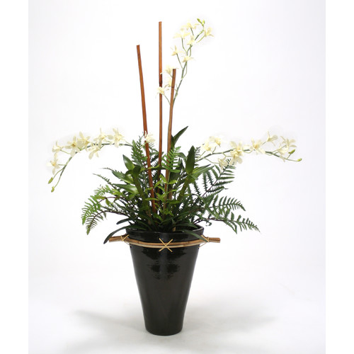 Distinctive Designs Black and White Orchid Garden in Fuji Vase