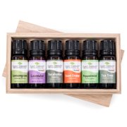 Plant Therapy Top 6 Essential Oils Sampler Set | Lavender, Eucalyptus, & Others In Wood Box | 100% Pure | 10 mL (1/3 oz)