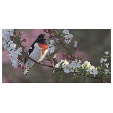 Great BIG Canvas | Rolled Jeffrey Hoff Poster Print entitled Rose Breasted Grosbeak and Apple Blossoms