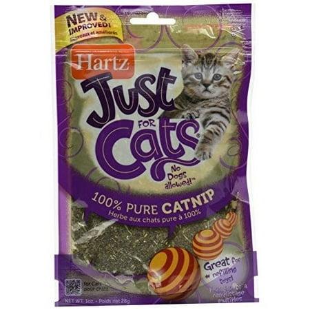 Hartz Just For Cats 100  Pure Catnip Cat Treats  1 0 Oz