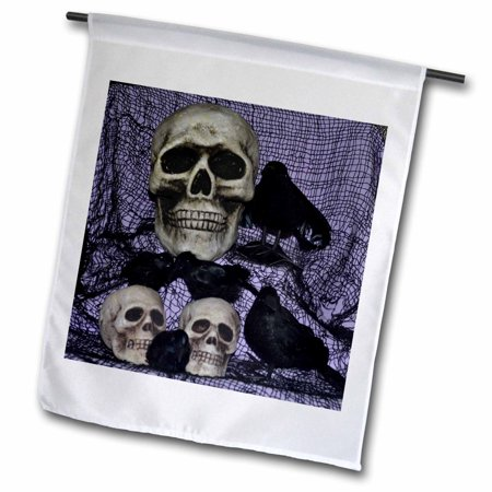 Image of 3dRose Skull and Ravens Skulls with Ravens by them - Garden Flag, 12 by 18-inch