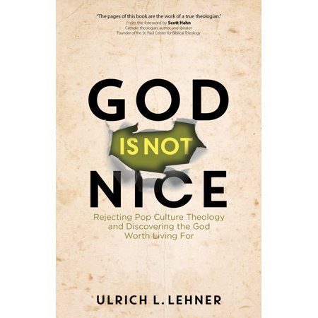 God Is Not Nice : Rejecting Pop Culture Theology and Discovering the God Worth Living