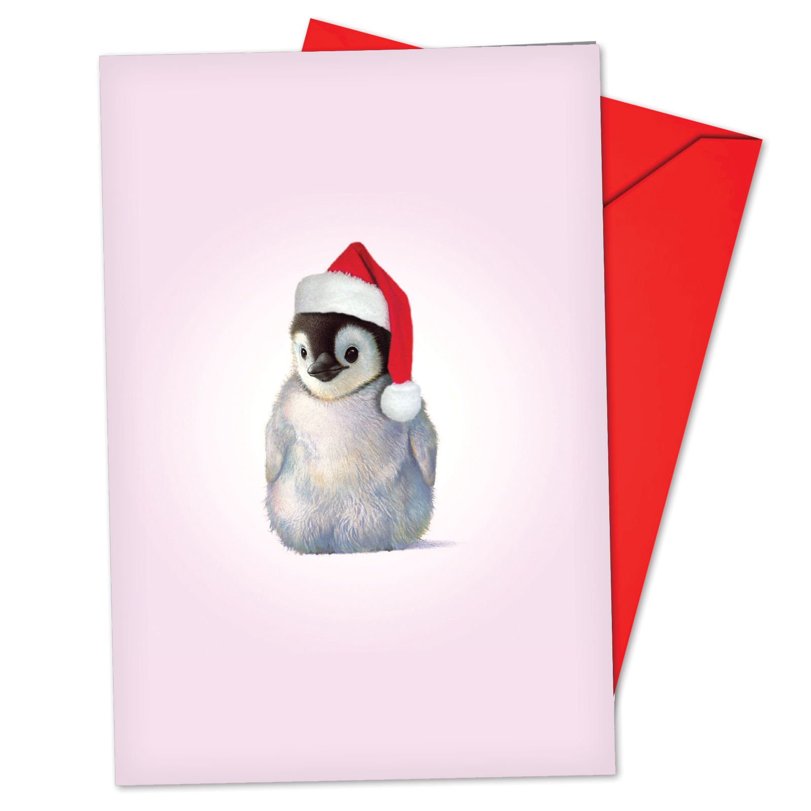 'B6726BXSG Zoo Babies Christmas Cards' Box Set of 12 Hilarious Merry Christmas Notecards with Envelopes by NobleWorks