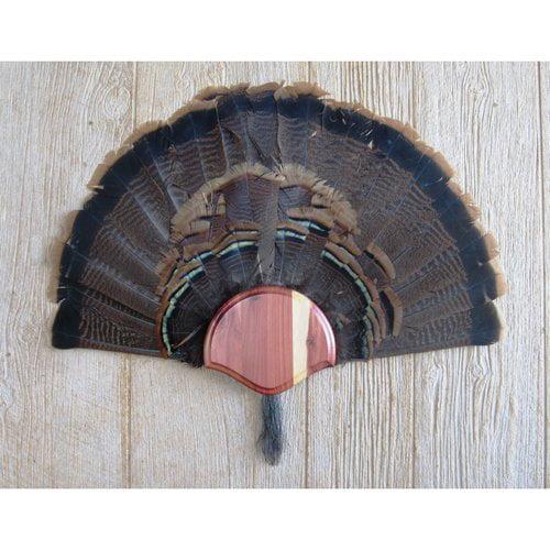 Taxidermists Woodshop TM1CD Cedar Turkey Fan/ Beard Mounting Kit