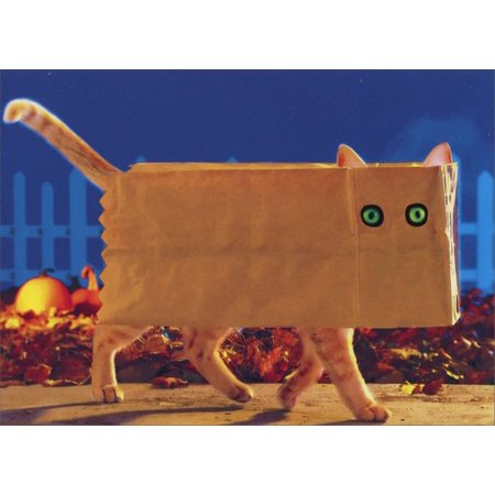 Avanti Press Cat in Paper Bag Funny / Humorous Halloween Card - 3d Halloween Card