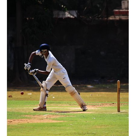 canvas print batsman ball game india defense cricket stretched canvas 10 x 14 ()