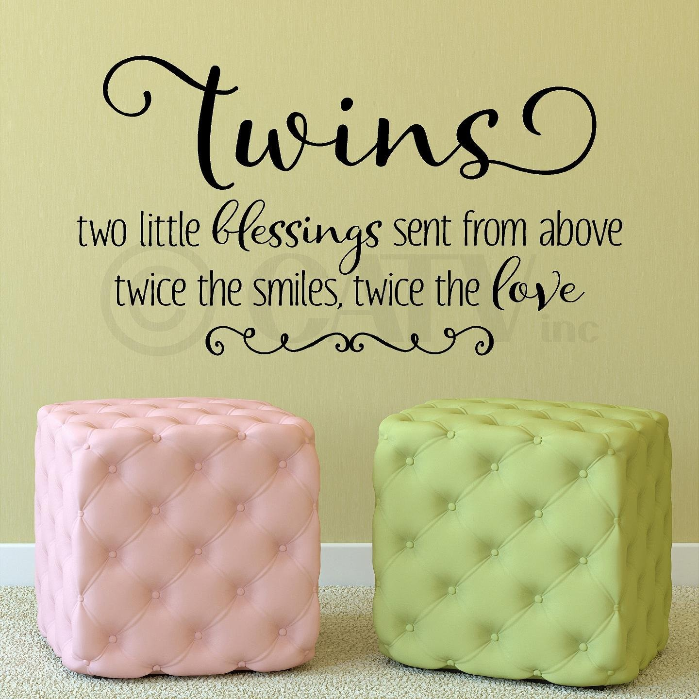 Twins Two Little Blessings Sent From Above Twice the Smiles Twice ...