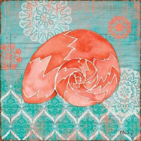 24 Coral Shell - Coral Cove Shells III Stretched Canvas - Paul Brent (24 x 24)