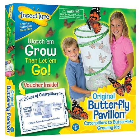 BUTTERFLY PAVILION - Butterfly Pavillion