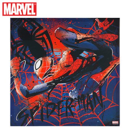 Spider-Man Canvas Wall Art Home Decoration Theater Media Room Man Cave