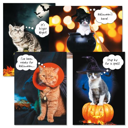 CATtitude Halloween Cards- Set of 8 Halloween Greeting Cards - Halloween Card Puns