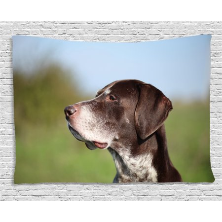 Hunting Decor Tapestry, German Short Haired Pointer in Wilderness Portrait Photo Kurzhaar Pet Dog, Wall Hanging for Bedroom Living Room Dorm Decor, 80W X 60L Inches, Multicolor, by (German Shorthair Pointer Hunting)
