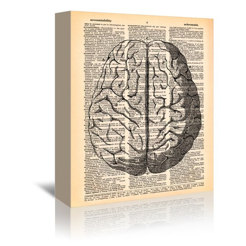 East Urban Home 'The Brain' by Book Dictionary Art Graphic Art on Wrapped Canvas