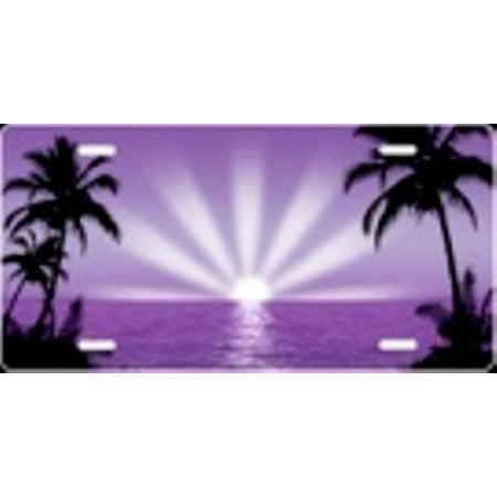 Purple Sunburst Airbrush License Plate Free Names on this Air Brush - image 1 of 2
