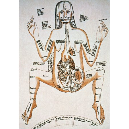 Anatomy Pregnancy 16Th C Na Pregnant Woman Drawing 16Th Century ...