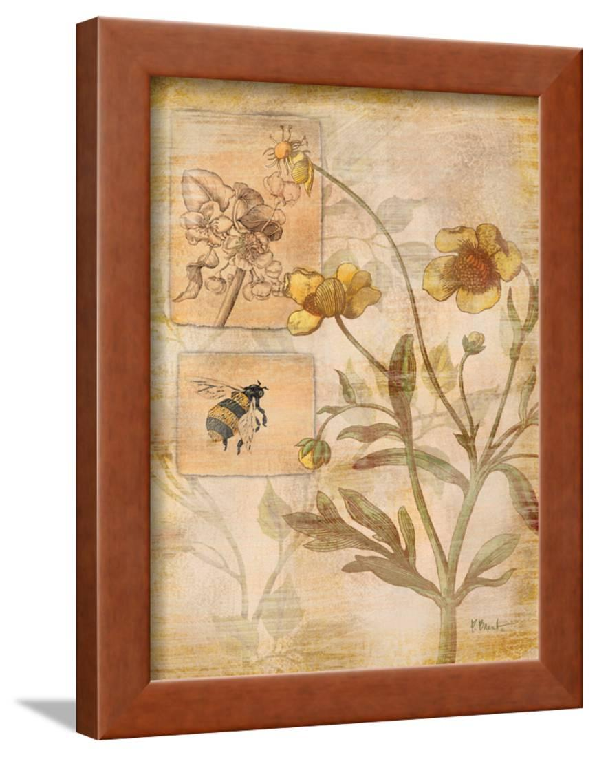 Flora Bumble Bee Framed Print Wall Art By Paul Brent - Walmart.com