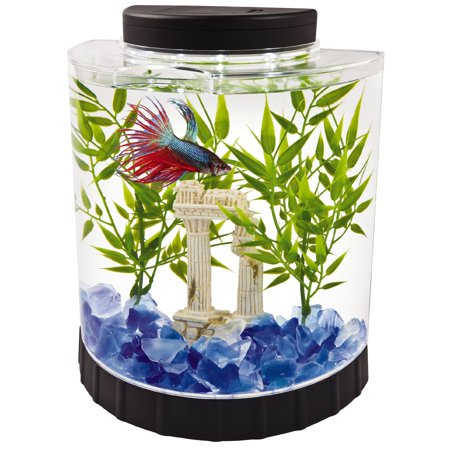 High Supply LED Half Moon Betta Aquarium, Betta Fish Tank (29049)