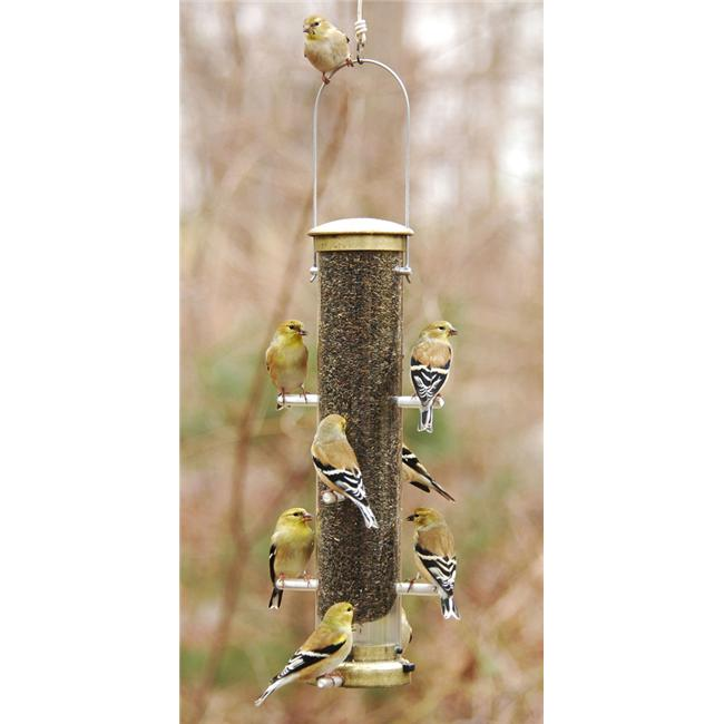 Aspects Medium Antique Brass Thistle Feeder Quick Clean