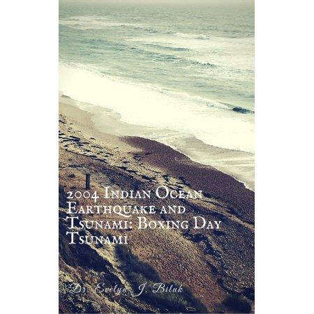 2004 Indian Ocean Earthquake and Tsunami: Boxing Day Tsunami - (The Great Indian Ocean Tsunami Of 2004)