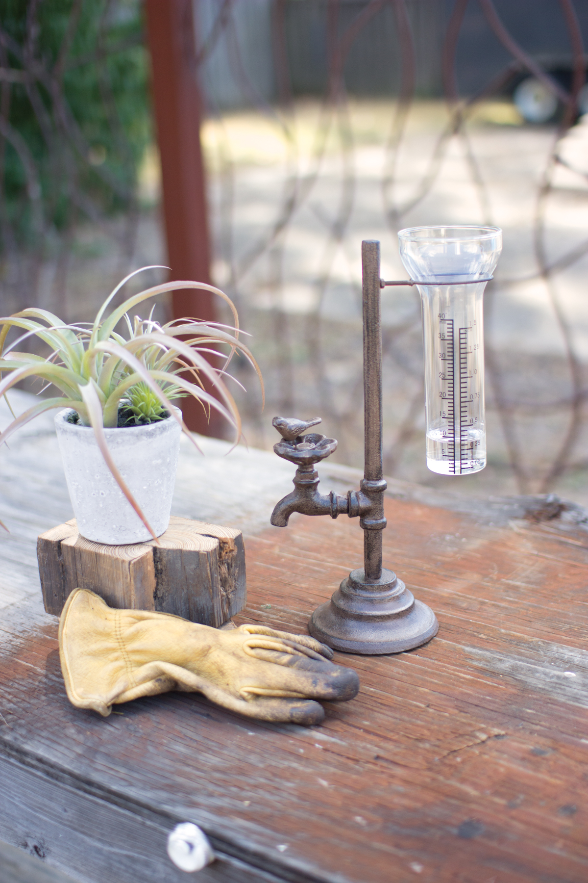 GwG Outlet Cast Iron Water Tap Rain Gauge CXX2285 by GwG Outlet
