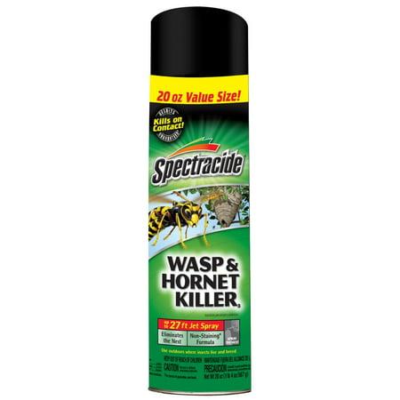 spectracide wasp and hornet aerosol spray 20 ounces walmart com