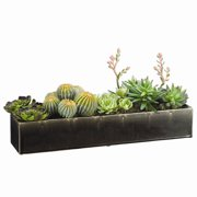 Tori Home Succulents Floor Plant in Planter