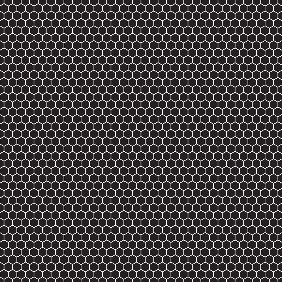 """Diy Shop 4 Specialty Cardstock 12""""X12""""-White On Black - image 1 of 1"""