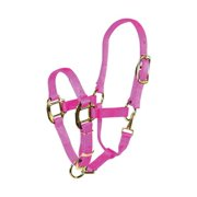 Hamilton 3QASWNHP Hot Pink Nylon Halter for Horse Weanling