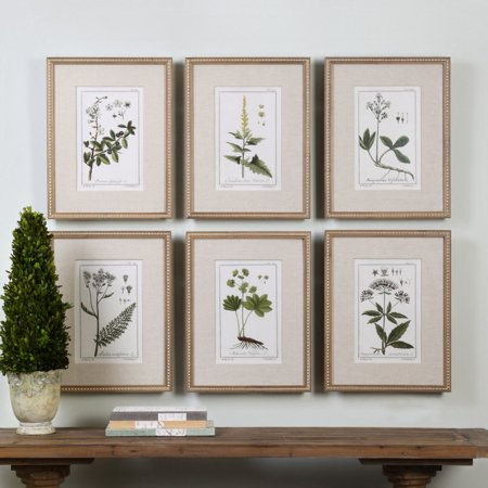 Uttermost Green Floral Botanical Study Wall Art - Set of 6 - Walmart.com