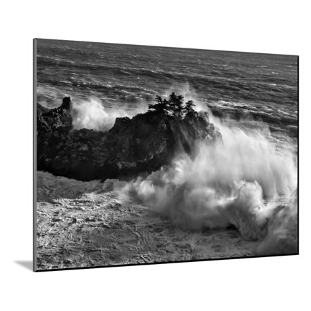 California, Big Sur, Big Wave Crashes Against Rocks and Trees at Julia Pfeiffer Burns State Park Wood Mounted Print Wall Art By Ann Collins