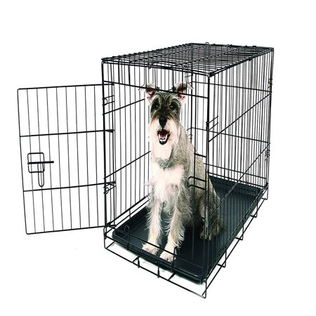 SECURE AND FOLDABLE Single Door Metal Dog Crate, Medium, DIMENSIONS: 30-inches long by 19-inches wide by 21-inches tall By Carlson Pet (30 Inch Storm Door With Dog Door)