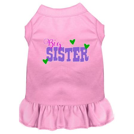 Big Sister Screen Print Dog Dress Light Pink Med Big Dot Dress