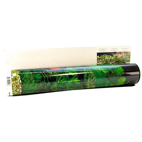 Blue Ribbon Pet Products Blue Ribbon Freshwater Black Tropical Freshwater Double Sided Aquarium Background... by Blue Ribbon Pet Products