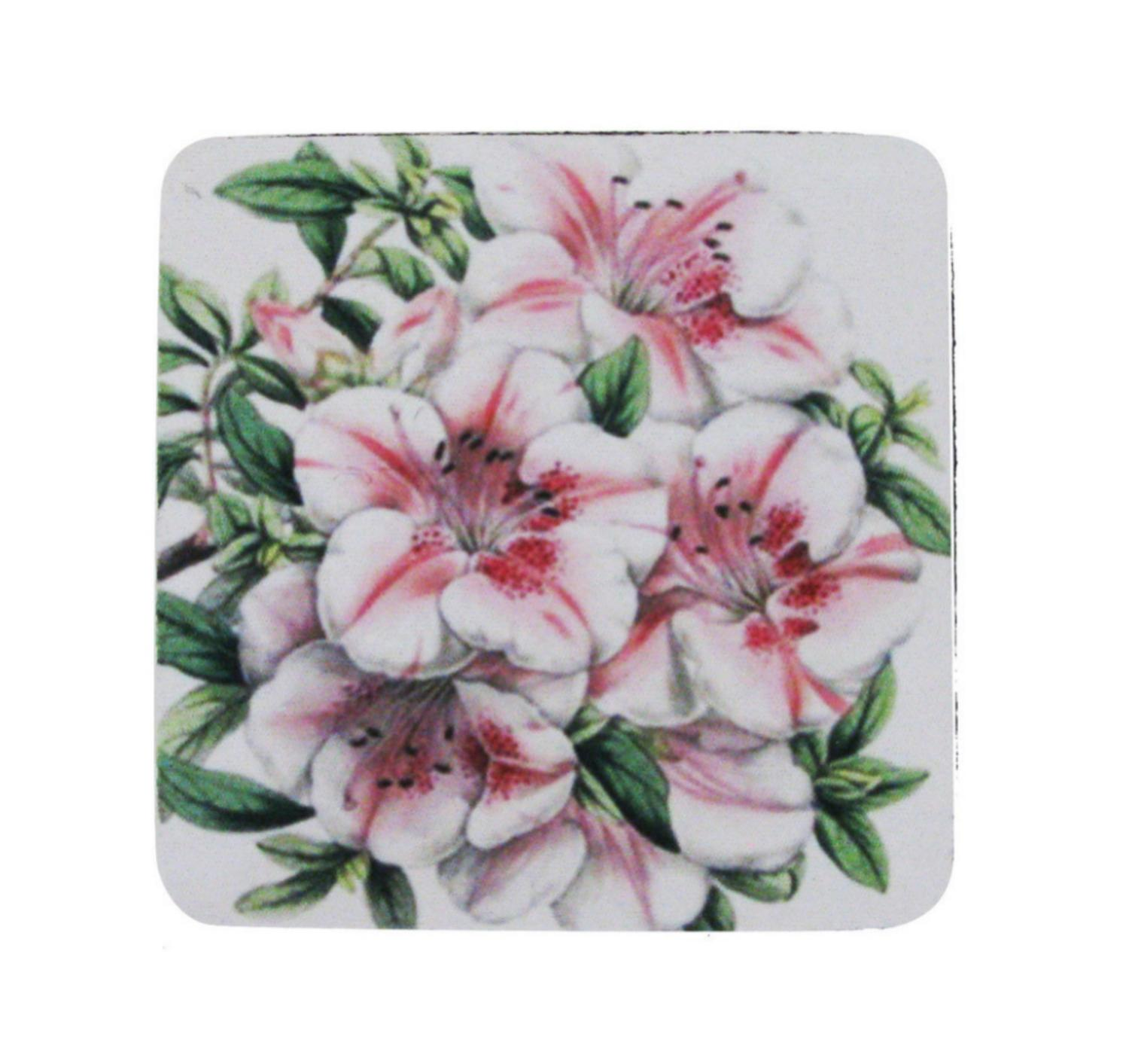Pack of 8 Absorbent Antique Style Botanical Azalea Print Cocktail Drink Coasters 4""