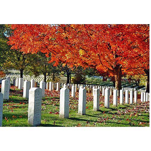 "Trademark Art ""Never Forget"" Canvas Art by CATeyes, 22x32"
