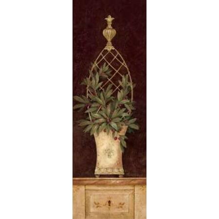 Olive Topiary I Canvas Art - Pamela Gladding (8 x 24)