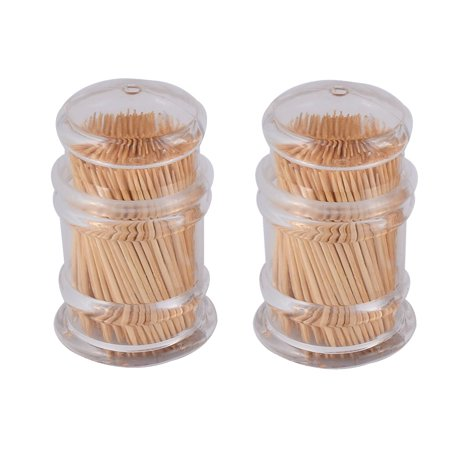 Home Restaurant Plastic Case Box Holder Container Clear 2pcs w Toothpicks ()