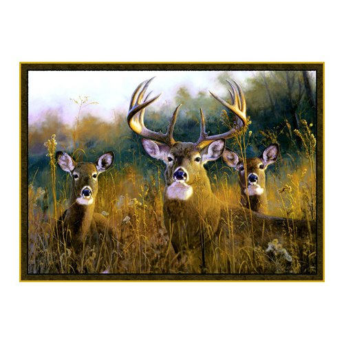 Custom Printed Rugs Wildlife Buck Stops Here Brown Novelty Area Rug