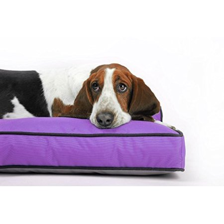 Venus Rectangle Pet Bed For Large Dog - Replaceable Waterproof Durable Washable Cover - 27