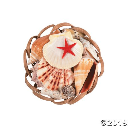 Scallop Basket Sea Shell