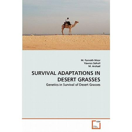 Survival Adaptations in Desert Grasses