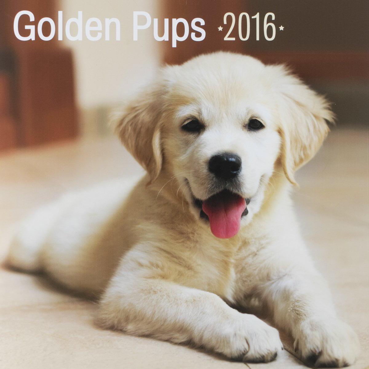 Joyfully Yours Daysp Golden Pups Calendar