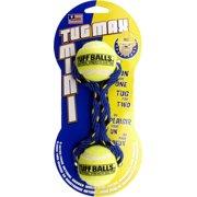 Petsport Usa Inc. Tuff Balls Mini Tug Max Dog Toy
